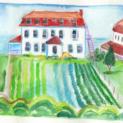 spring-house-fields