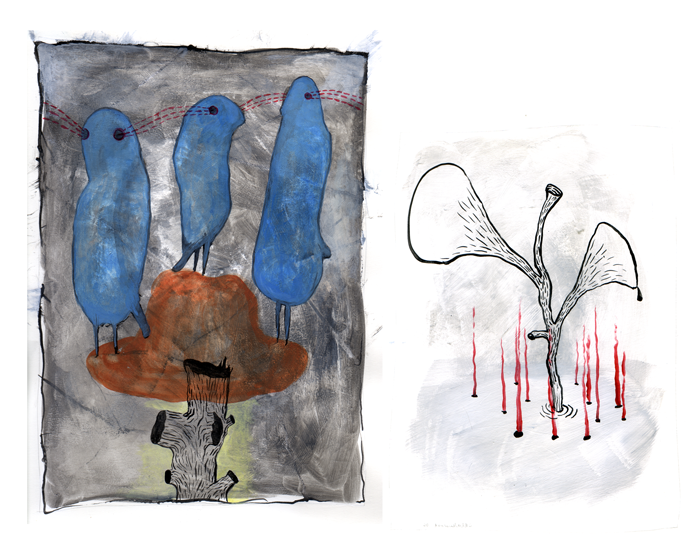 birds-hat-and-oil